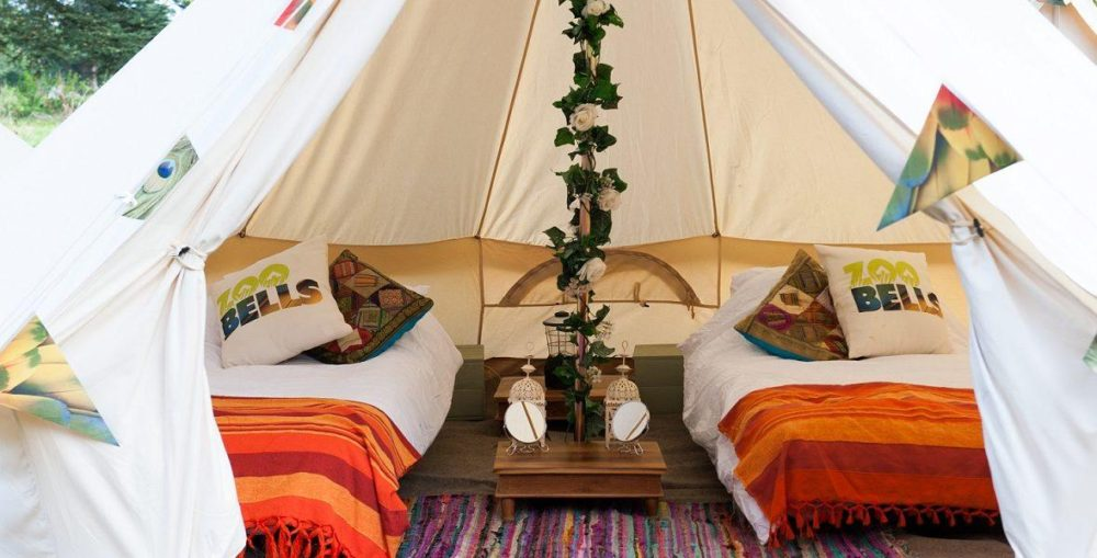 2020 Glamping Packages Have Arrived!