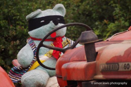 Teddy on a tractor